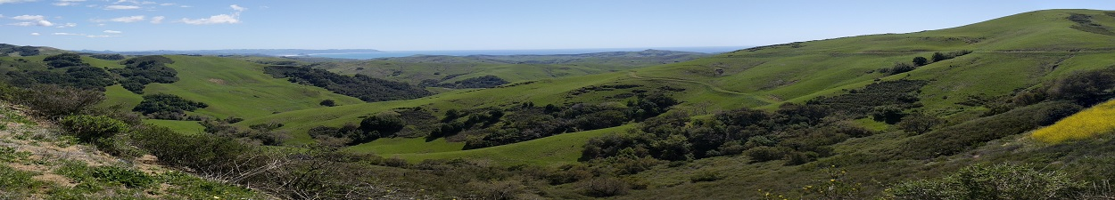 Rolling hills with the ocean and mountains in the background